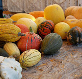 The Paleo Table: 5 winter squashes plus a recipe