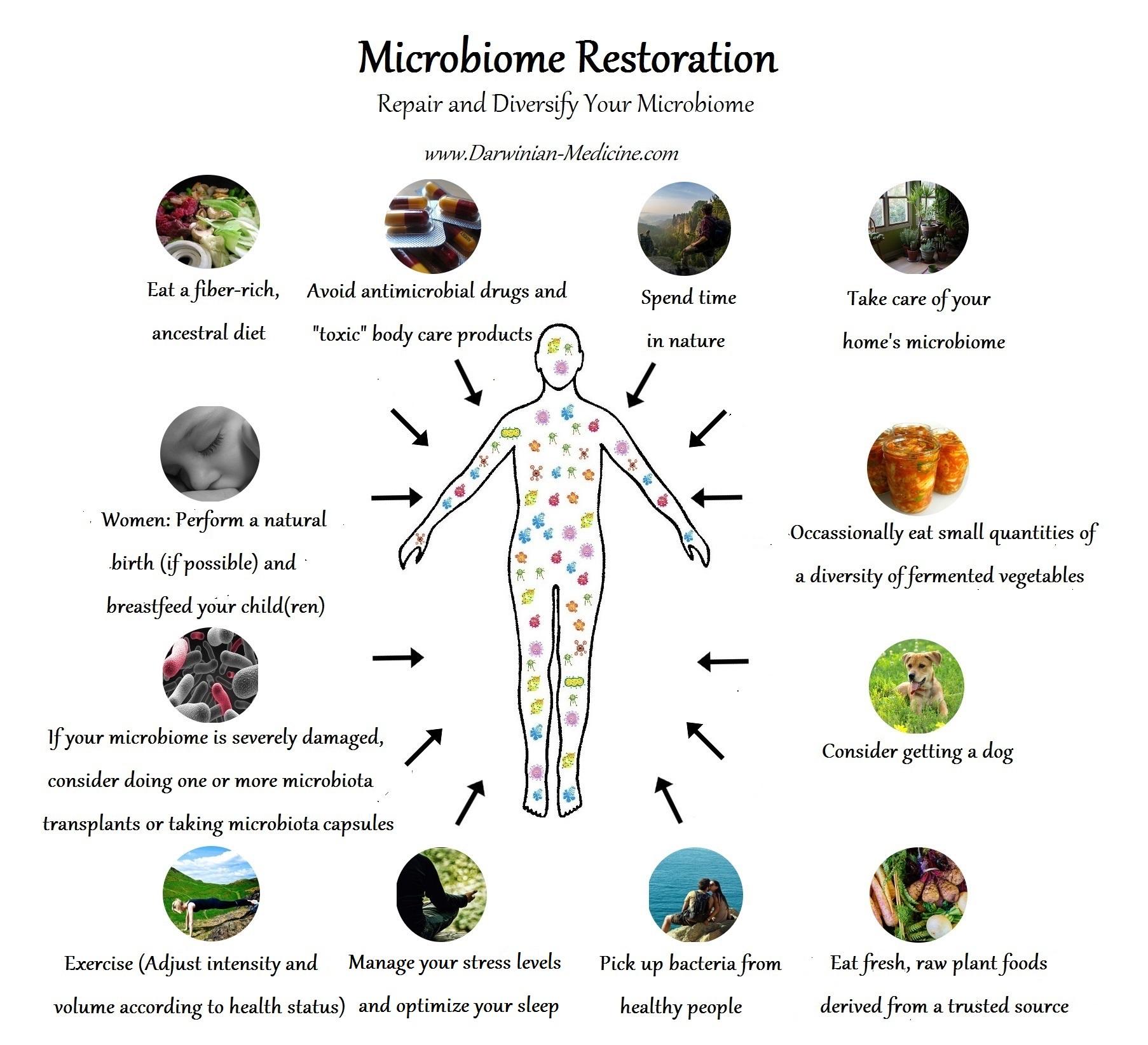 microbiome-restoration